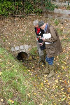 Hans-Peter Blohm vom Wasserverband Nettelnburg und die Biologin Frau Stiller begutachten eine Verrohrung des Grabens und suchen nach besonderen Pflanzen an der Grabenböschung.