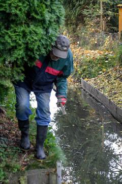 Horst Hülden vom Wasserverband quält sich am Graben entlang, weil entgegen der Regeln der Schauweg fehlt.