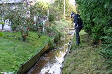 Hans-Peter Blohm vom Wasserverband Nettelnburg sieht sich interessante Holzkonstruktionen als Böschungssicherung an, Ob das durchgeht?