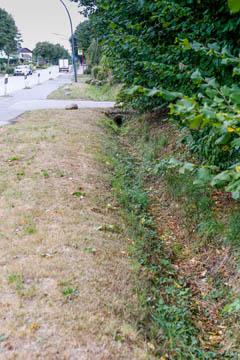 Graben parallel zur Straße Oberer Landweg in Nettelnburg