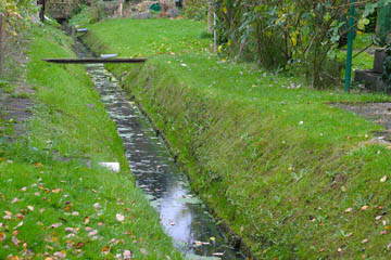 Eine naturnahe Böschung, also in Ordnung. Auf der rechten Seite schützt eine zulässige Böschungsfußsicherung von 10-15cm über Niedrigwasserspiegel gegen Unterspülung.