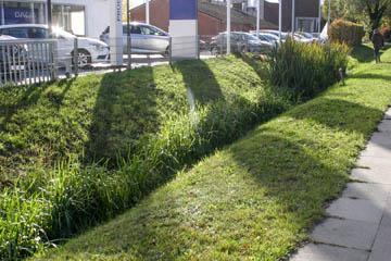 Ein gutes Beispiel für eine ökologische Variante, wie wir sie jetzt häufiger brauchen. Einerseits gemäht und andererseits bleiben Gräser für Insekten stehen. Der Wasserfluss ist weiterhin ausreichend.